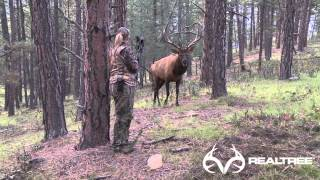 15-Yard Files: Female Bowhunter Stares Down Giant Bull Elk at 4 Yards thumbnail
