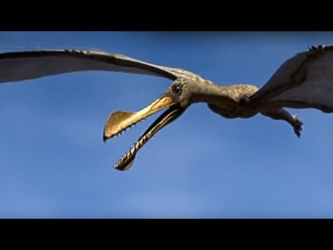 Reptiles of the Skies | Walking with Dinosaurs in HQ | BBC