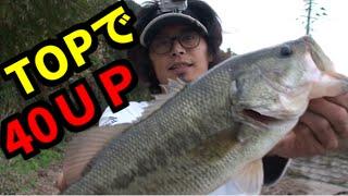 バス釣り まだまだTOPで出るぞ! Bass fishing in Japan