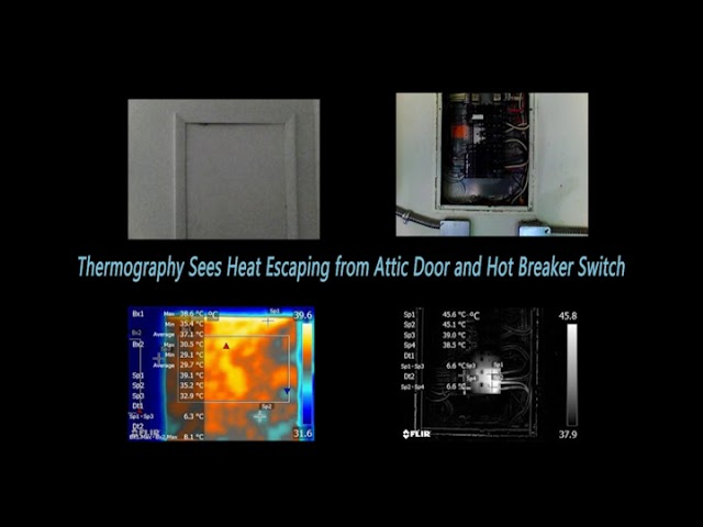 SkyView Thermography