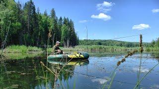 Рыбалка на озере нашёл окунёвое место 322
