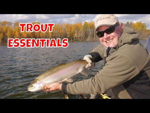 PHIL ROWLEY LAKE FISHING ESSENTIALS
