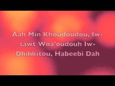 Hisham Abbas-Nari Narien (Lyrics)