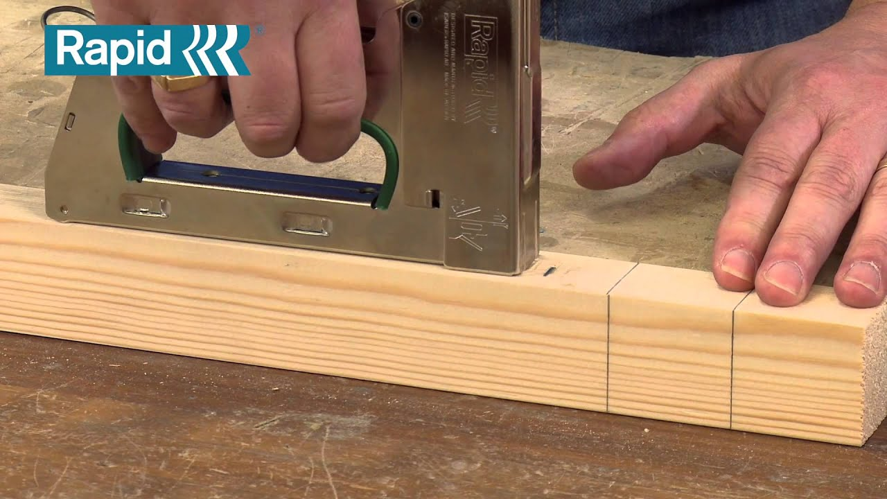 rapid heavyduty staple gun with extra staples staple