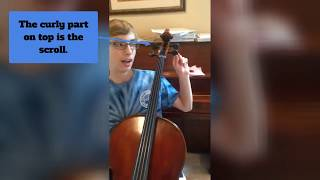 Positive Notes — Cello Basics Tutorial