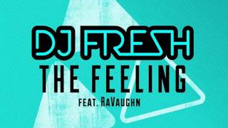 DJ Fresh feat. RaVaughn - The Feeling (Metrik Remix)