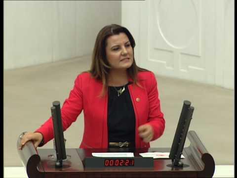 Danıştay Yasa Tasarısı ile ilgili meclis konuşması