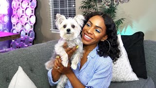 Dog Mommy Life 🐶 What to Expect: Adopting, Expenses, Potty Training & More!  ▸ VICKYLOGAN
