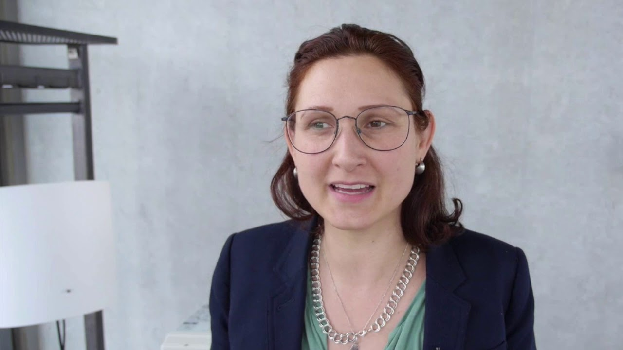 Ferda Ataman Zur Progressiven Sozialen Plattform Plattformpro