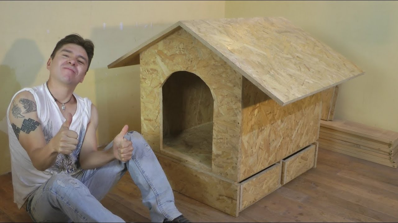 Como Hacer Casa De Perro Facil Construccion Luis Lovon