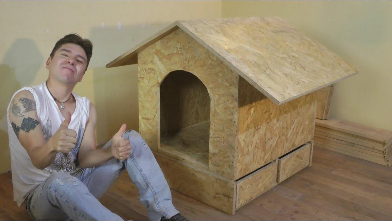 Como hacer casa de perro facil construccion luis lovon for Programa para disenar casas facil