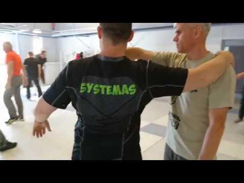 RMA Systema Sv Skogorev France 18