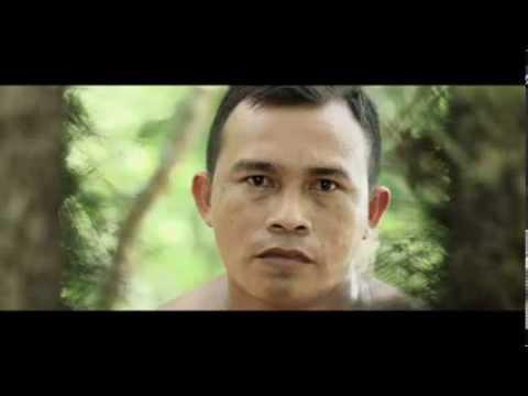 Trailer do filme A Floresta de Jonathas