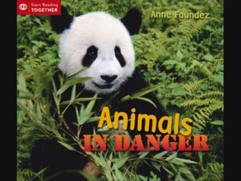Animals in danger -sad piano song - YouTube