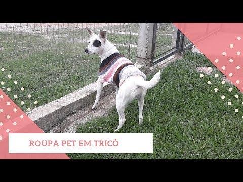 ROUPA PET EM TRICÔ TAMANHO G   CLARISSE FRONER