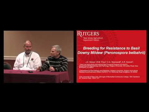 Grower to Grower Panel Discussion: 2015 Basil Downy Mildew Workshop held in Atlantic City, NJ