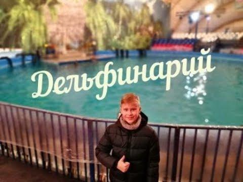 Дельфинарий в Купчино Санкт-Петербург 2018