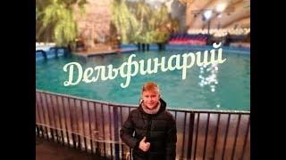 Смотреть видео Дельфинарий в Купчино Санкт-Петербург 2018 онлайн
