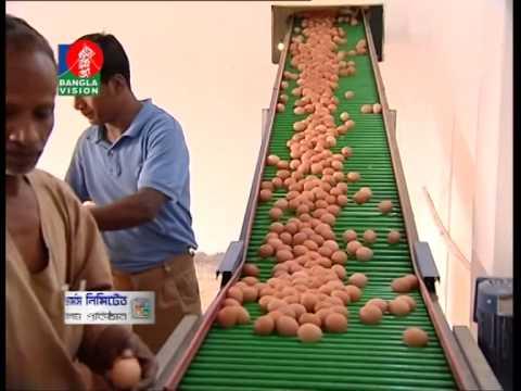 Nahar poultry