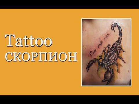 Tattoo Скорпион