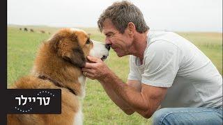 נשמה של כלב - טריילר - 16.3 בקולנוע