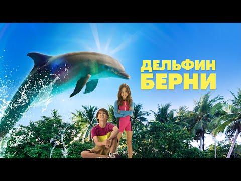 Мультфильм история дельфина