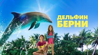 Дельфин Берни /Bernie the Dolphin/ комедия, семейный