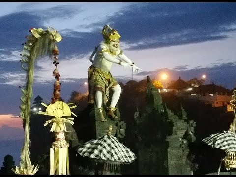Sacred white monkey Attraction in Kecak Dance at Uluwatu, Bali Indonesia