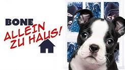 Bone allein zu Haus (Kinderfilm, Hundefilm, ganzer Spielfilm, deutsch) *ganze Kinderfilme kostenlos*