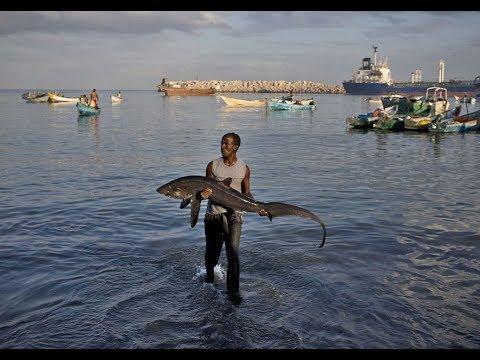 Somalia gives up it's fishing rights to China