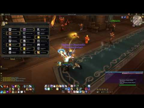 Protection Paladin PvE Tank Guide 7 1/7 1 5 (7 3 update available
