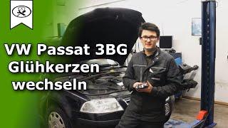 VW Passat 3BG Glühkerzen Wechseln  |  Change glow plugs  | VitjaWolf  | HD