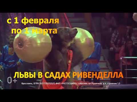 ЦИРК Ярославль