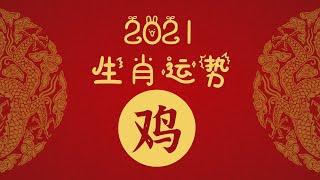 2021年十二生肖运势——鸡 - YouTube
