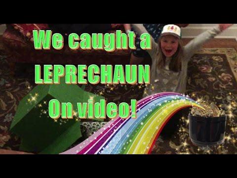on videot musta käärme vaikerrus suku puoli kohtaus
