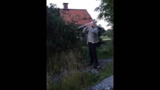 Hornlåt och polska efter Hjort-Anders