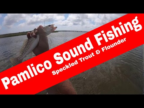 Speckled Trout And Flounder In Pamlico Sound - OBX Fishing