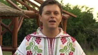 Puiu Codreanu - De mic am umblat prin lume