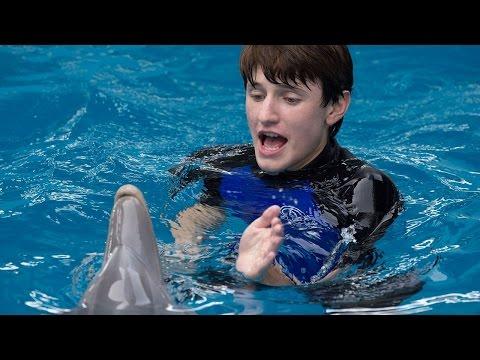WATCH FULL HD Stream · vf Gratuit · Dolphin Tale 2 MOVIE ONLINE