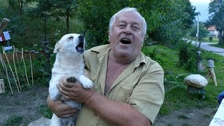 Pas i čovjek pjevaju u duetu