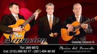 FELIZ CUMPLEAÑOS MADRE - TRIO SENSACIÓN - Gabriel Orozco