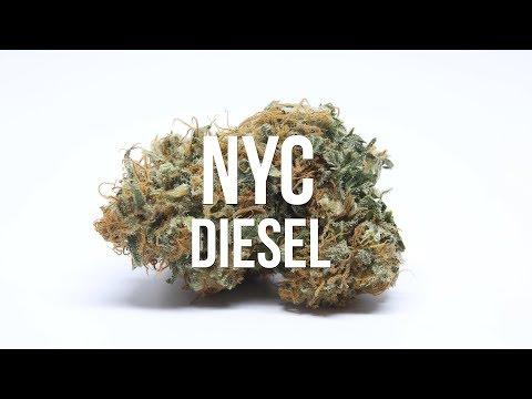 NYC Diesel Review