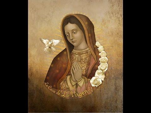 Consideraciones botánicas en torno al sagrado original de Guadalupe-Mtro. Arturo Rocha