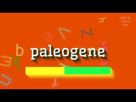 "How to say ""paleogene""! (High Quality Voices)"