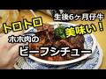 美味すぎ!仔牛のホホ肉ビーフシチュー [Beef Stew] の動画、YouTube動画。