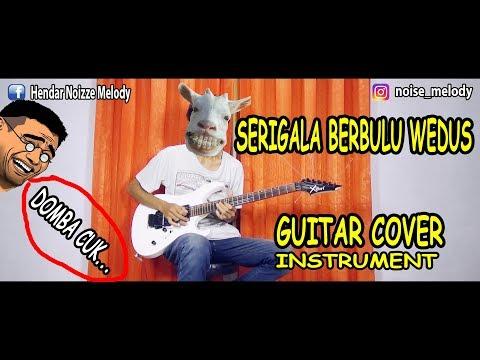 SERIGALA BERBULU DOMBA Guitar Cover Instrument By:Hendar