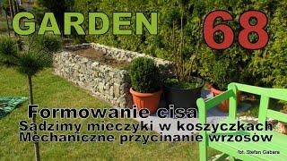 GARDEN 68 - Formowanie cisa - Mech.przycinanie wrzosów i bukszpanu - Mieczyki w grupach