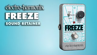 Electro-Harmonix Freeze Sound Retainer Demo