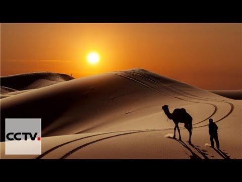 знакомство  с пустыней