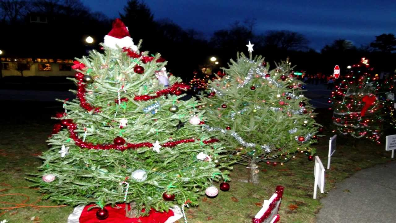 Slater Park Christmas Trees Rhode Island Ri Tree 2012 Hd YouTube - Christmas Trees Ri